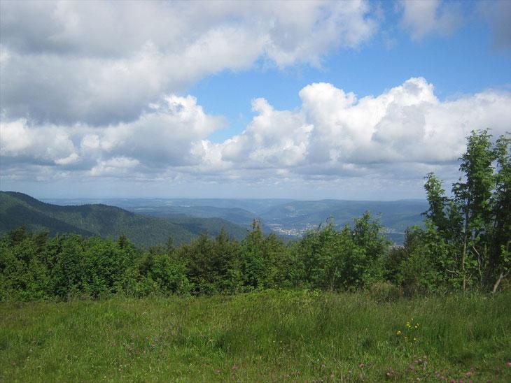 Ausblick auf die Landschaft in den Vogesen