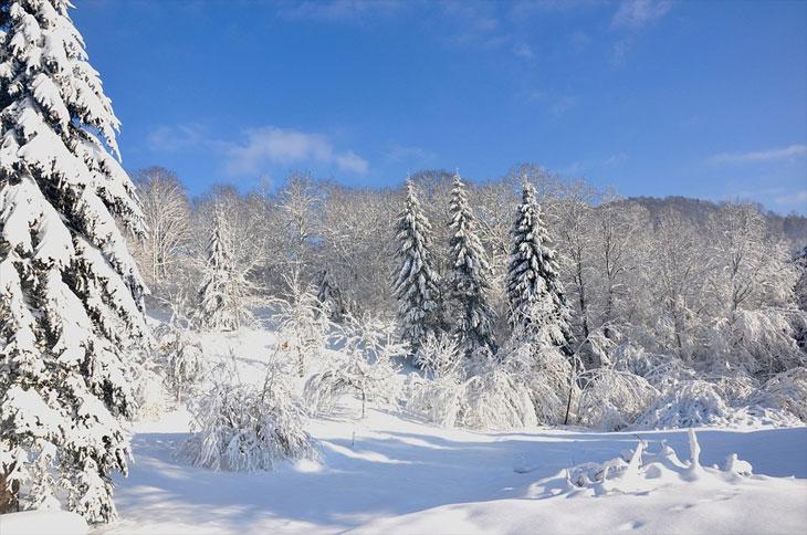 Winterurlaub in den Vogesen